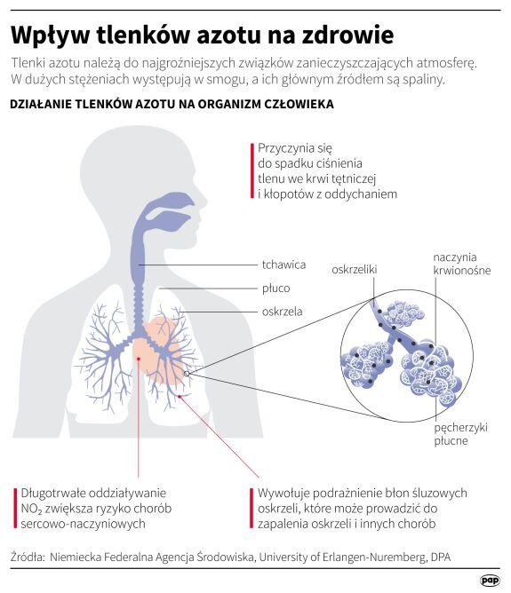 Wpływ tlenków azotu na zdrowie