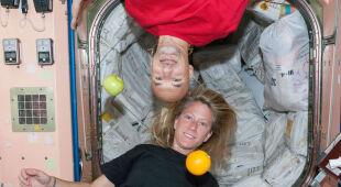 Co Parmitano robi na ISS?